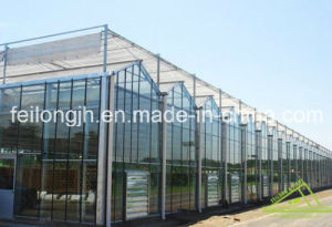 Venlo Glass Greenhouse for Agriculture pictures & photos