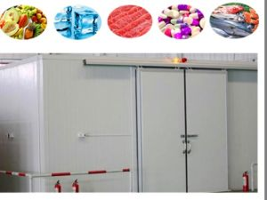 Medium Refrigeration Equipment Cold Room for Meat Fish Vegetable Fruit