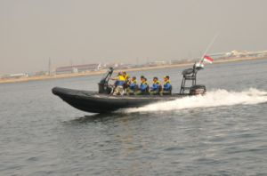 Fiberglass Hull Large Military Boat (FQB-R900) pictures & photos