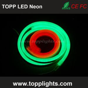 Best LED Neon Flex Price Neon Light pictures & photos