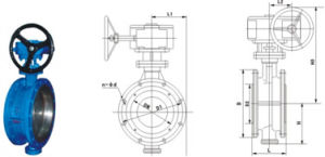D343h-16c Metal Seated Butterfly Valve pictures & photos