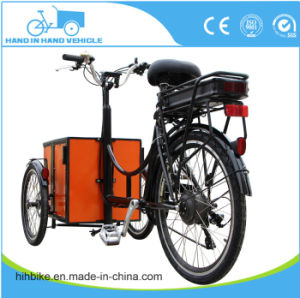 Mini 3 Wheels Motorcycle Adult Dog Cart Tricycle pictures & photos