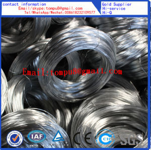 Good Quality Black Annealed Iron Wire/ISO9001 Q195 Material pictures & photos
