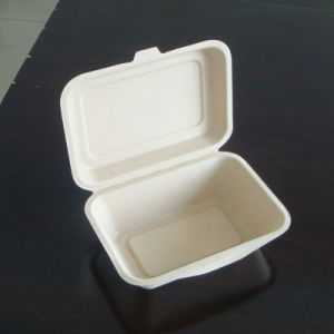 Sugarcane Bagasse Biodegradable Food Container pictures & photos
