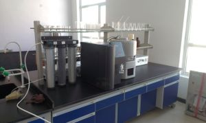 10lph Laboratory Equipments RO/Di Deionized Water System pictures & photos