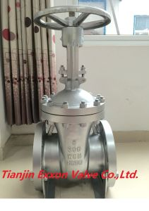 API600/ANSI/DIN Gate Valve pictures & photos