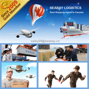 Shanghai Air Cargo Service to Canada pictures & photos