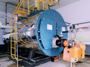 1t, 2t, 3t, 4t, 6t Wns Gas Fired Steam Boiler pictures & photos