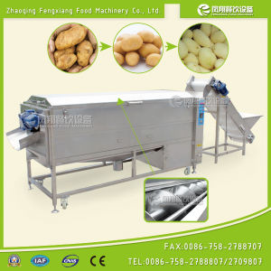 Lxtp-3000 Brush Potato Carrots Peeling Washing Machine with Feeding Conveyor pictures & photos