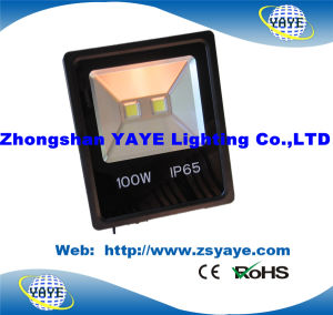 Yaye 18 Hot Sell High Quality Cheap Price High Power 50W LED Tunnel Light / 50W LED Floodlight with Warranty 2/3 /5 Years pictures & photos