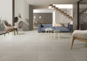 Full Body Porcelain Tile for Floor and Wall 600X600mm (BS03) pictures & photos