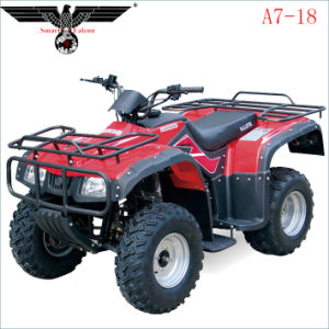 A7-18 Buffalo 250cc Fast Motorcycle ATV Quad Scooter with Ce pictures & photos