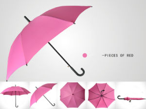 Business Long Umbrella pictures & photos