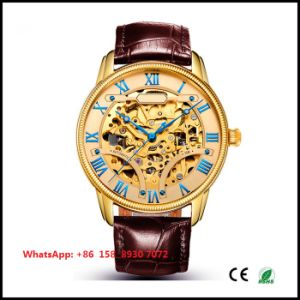 Excellent Handsome Automatic Male Watch with Genuine Leather Strap Fs621 pictures & photos