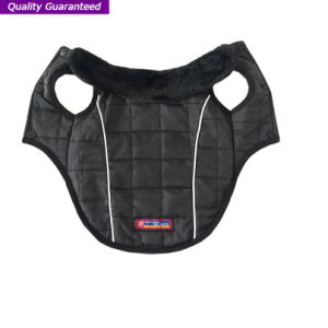 Dog Sport Product of Winter Pet Clothes pictures & photos