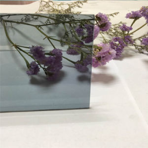 4mm G-Crystal Gray Tinted Glass&Color Glass&Painted Glass for Decoration/Building pictures & photos