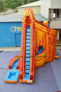 Giant Commercial Use Inflatable Slide with Pool for Water Park (chsl1114s) pictures & photos