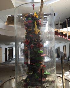 Customized Large Acrylic Round Aquarium pictures & photos