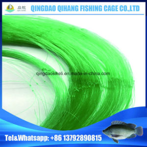 Agricultural PE/Nylon Monofilament Fishing Nets pictures & photos
