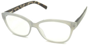 R17040 New Design High Quality Reading Glass Unisex Style Read Glasses pictures & photos