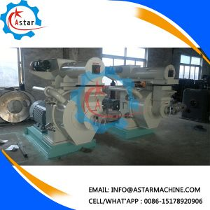 Sawdust Pine Wood Pellet Making Machine in Europe pictures & photos