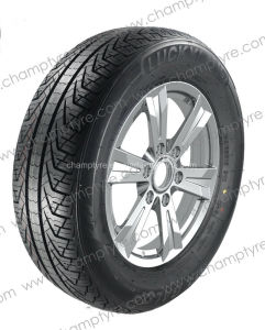 All Season Weather PCR Tyre of Excellent Performance pictures & photos