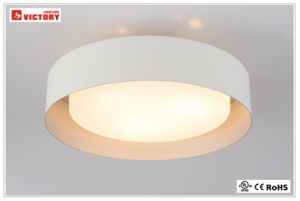 Waterproof LED Modern Aluminum Ceiling Glass Light Lamp pictures & photos