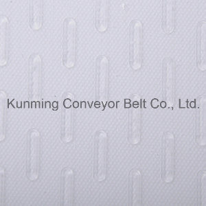 Conveyor Belt for Food Processing (ESM200/2: 0+2.0L/4.0PE) pictures & photos