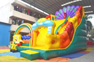 Peacock Inflatable Slide Chsl623 pictures & photos