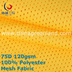 Mesh 100%Polyester Knitted Fabric for Garment Shirt (GLLML390) pictures & photos