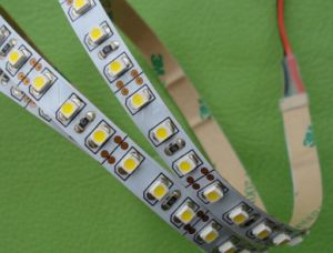 IP68 IP65 Waterproof 24V/12V Flexible LED Light Strip pictures & photos