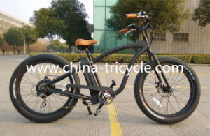 500W 26 Inch Tyre 48V13ah Battery for Electric Bike (SP-EB-13) pictures & photos