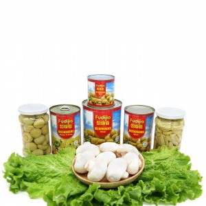 Canned Mushroom Pns with High Quality pictures & photos