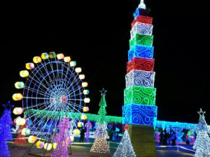 LED Christmas Net Lights Outdoor Holiday Decorations pictures & photos