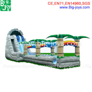 Best Quality Inflatable Slip and Slide for Sale (DJWS016) pictures & photos