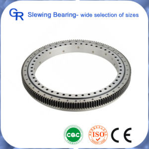OEM Slewing Bearing Slewing Ring pictures & photos