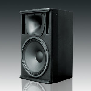 "High Quality 15"" 2-Way Professional Stage Loudspeaker (KP-15) pictures & photos"