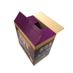 Color Printing Corrugated Shoe Packing Box (FP6059) pictures & photos