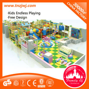 Popular Kids Naughty Castle Indoor Playhouse pictures & photos