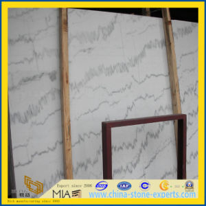 Statuario/Guangxi White Marble Slab for Flooring Tile / Wall/ Countertop pictures & photos