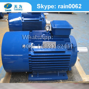 Y2 Series Cast Iron Housing 3 Phase Motor Electric Motor 220V pictures & photos