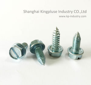 Indented Slotted Hex Washer Head Self-Drilling Screw pictures & photos