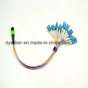 Low Insertion Loss 0.25m 0.9mm 12f MPO-LC Patch Cord pictures & photos