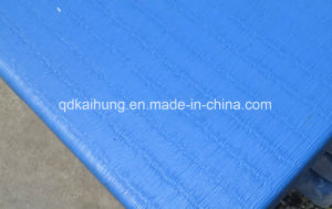 Ijf Approved High Quality Competition Judo Jiu Jitsu Mats for Sale pictures & photos