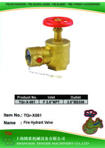 "Pressure Reduce Angle Hydrant Valve: F2-1/2""NPT==2-1/2""BS336 pictures & photos"