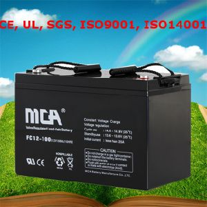 Motive Battery Lawn Mower Battery 12V pictures & photos