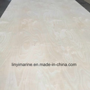 Russia Birch Plywood Poplar Core or Birch Core for USA Market pictures & photos
