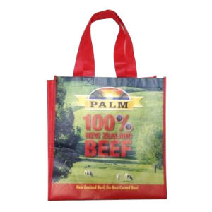 PP Non-Woven Shopping Tote Bag with Hook & Loop on The Top