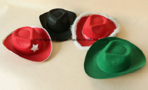 Promotional Cheap Felt Party Hats for Festival (CPPH-010) pictures & photos