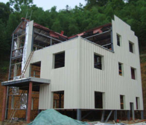 Living House-Light Steel Structure Prefabricated/Modular House pictures & photos